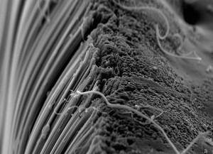 Свойства углеродного бетона